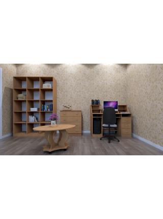 Книжный шкаф-стелаж КШ-3